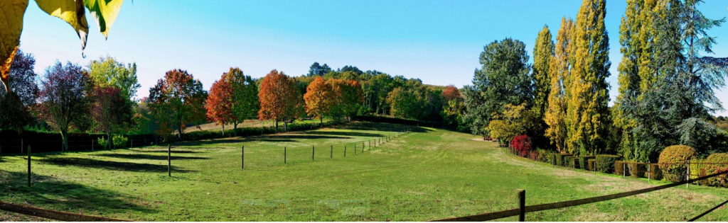 Autumn views of Domaine de Pessel meadow and trees